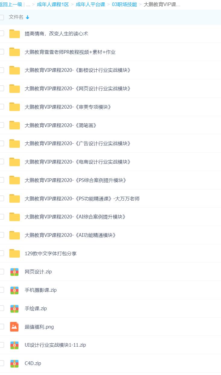 大鹏教育设计视频百度云网课下载(完结)
